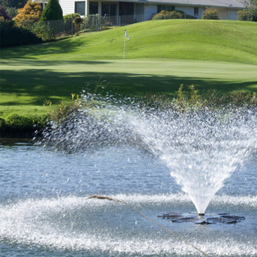 #17 Green and fountain